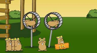 Flight of the Hamsters | Free online game | Mahee.com