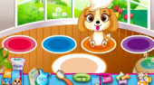 Pet Shop Caring | Mahee.com