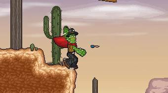 Cactus McCoy | Free online game | Mahee.com