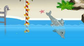 My Dolphin Show 2 - online game | Mahee.com
