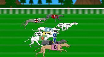 Greyhound Racer - online game | Mahee.com