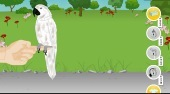 Bird Needs Owner - Game | Mahee.com