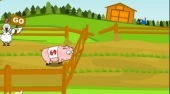 Pig Race | Free online game | Mahee.com