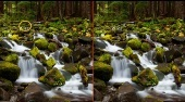 Cascades forestiers | (Forest Waterfalls) | Mahee.fr