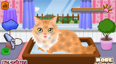 Groom That Kitty | Free online game | Mahee.com