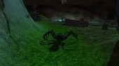 Spider Adventures | Mahee.fr