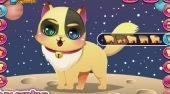 Cute Kitten Creator - Game | Mahee.com