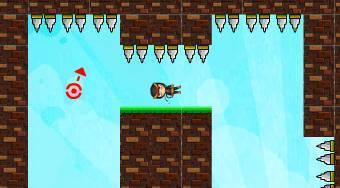 Ninja Gravity Adventure - online game | Mahee.com