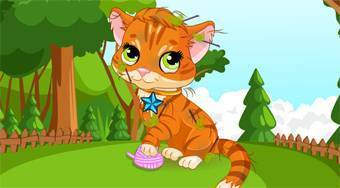 A Day with My Pet - online game | Mahee.com