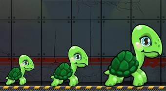 Turtle Walks 2 - Game | Mahee.com