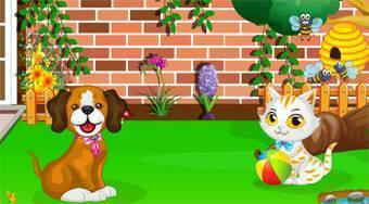 Pet Clinic | Free online game | Mahee.com