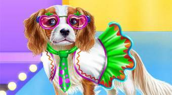 World Puppy Fashion Tour - online game | Mahee.com
