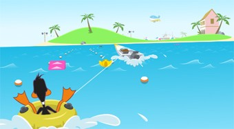 Boomerang Sports - online game | Mahee.com