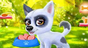 Happy Dog - online game | Mahee.com