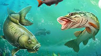 Let's Fish - online game | Mahee.com