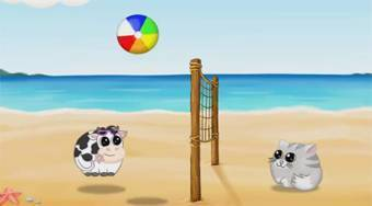 Beachball.online - Game | Mahee.com