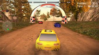 Dirt Rally Driver HD - online game | Mahee.com