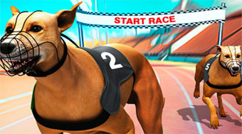 Crazy Dog Racing Fever - online game | Mahee.com